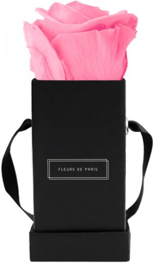 Collection Infinity Baby Pink Mini noir - anguleux