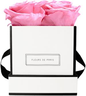 Collection Infinity Baby Pink Petit blanc - anguleux